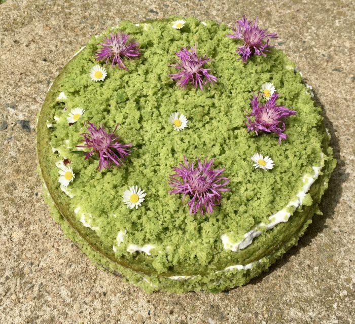Veganský mechový dort se svou zářivě zelenou barvou ze špenátu