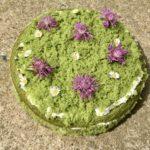 Mechový dort – veganský