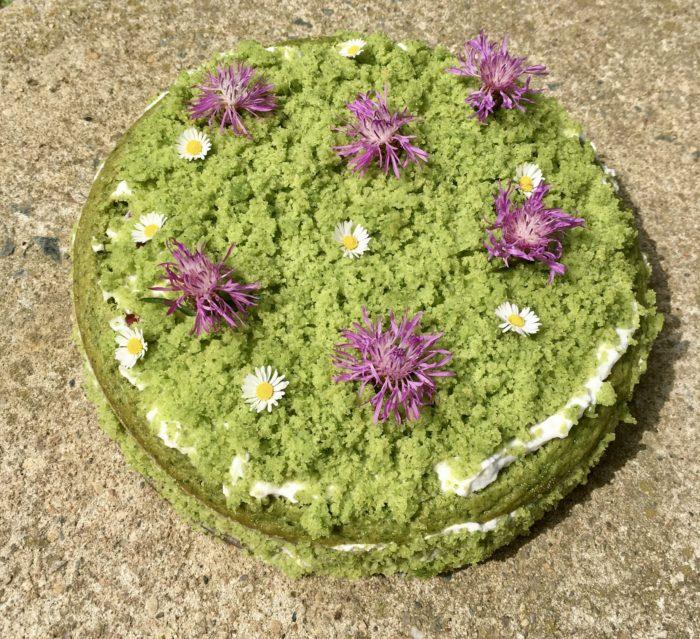 Mechový dort - veganský