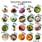 Sezónní ovoce a zelenina v září